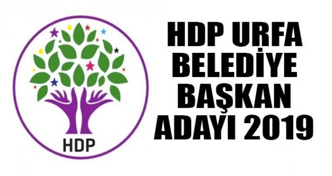 Flaşş…HDP'den Son Dakika Sürpriz Adaylar