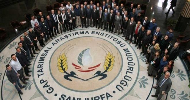 GAPTAEM'de Uluslararası Buğday Programı Değerlendirme Toplantısı Yapıldı