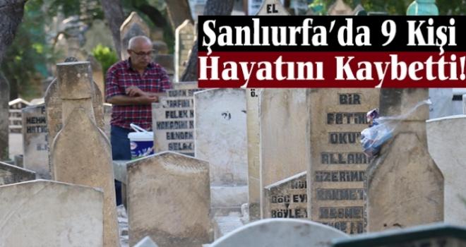 Şanlıurfa'da 9 Kişi Hayatını Kaybetti!