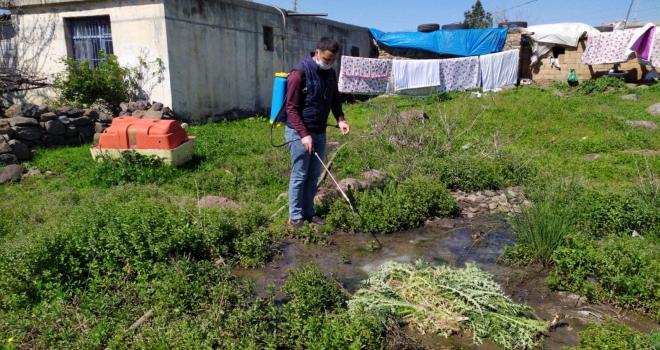 Belediye ekipleri ilaçlama çalışmalarına devam ediyor