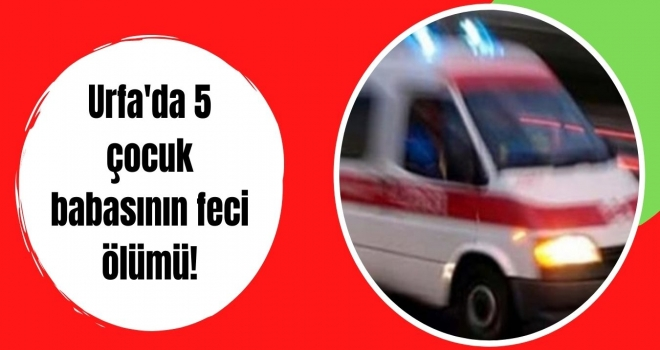 Urfa'da 5 çocuk babasının feci ölümü!