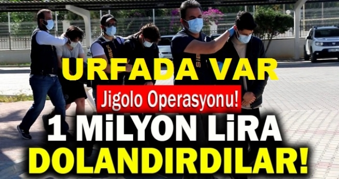 URFA'DA JİGOLO OPERASYONUNDA 8 KİŞİ GÖZALTINA ALINDI