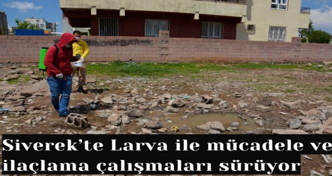 Siverek'te Larva ile mücadele ve ilaçlama çalışmaları sürüyor