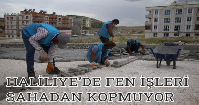 HALİLİYE'DE FEN İŞLERİ SAHADAN KOPMUYOR