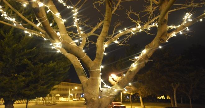 Siverek Belediyesinden Parklarda Işıklandırmalar Ve Peyzaj Çalışmaları