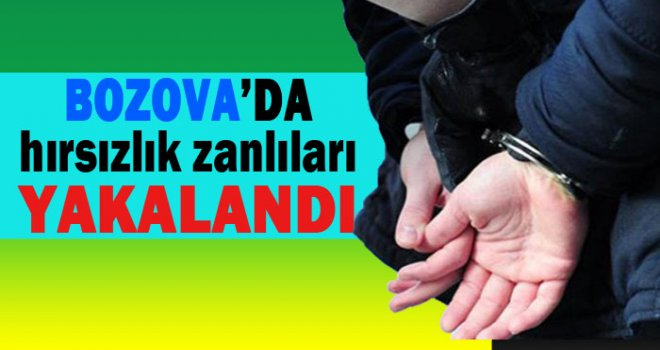 Bozova'da Hırsızlara Operasyon: 2 kişi tutuklandı