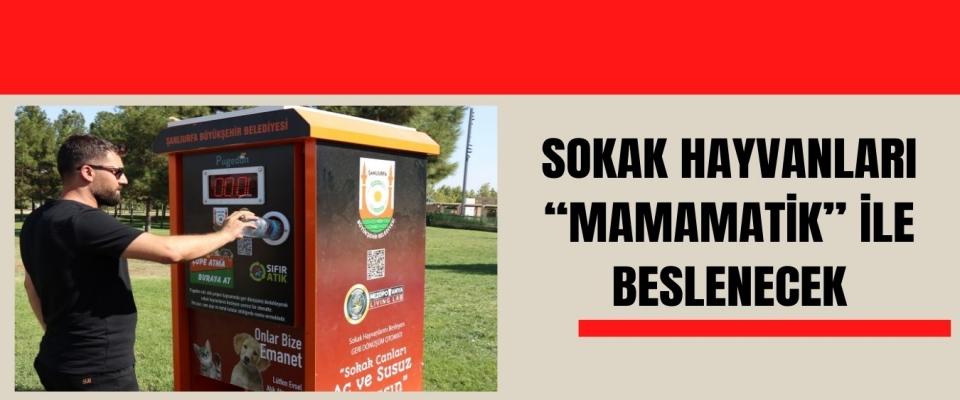 """SOKAK HAYVANLARI """"MAMAMATİK"""" İLE BESLENECEK"""