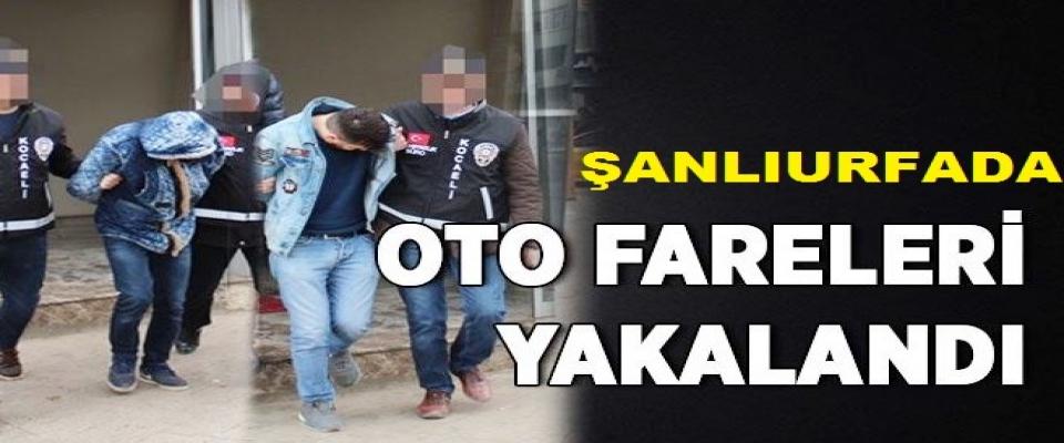 Urfa'da oto farelerine baskın! Gözaltılar var