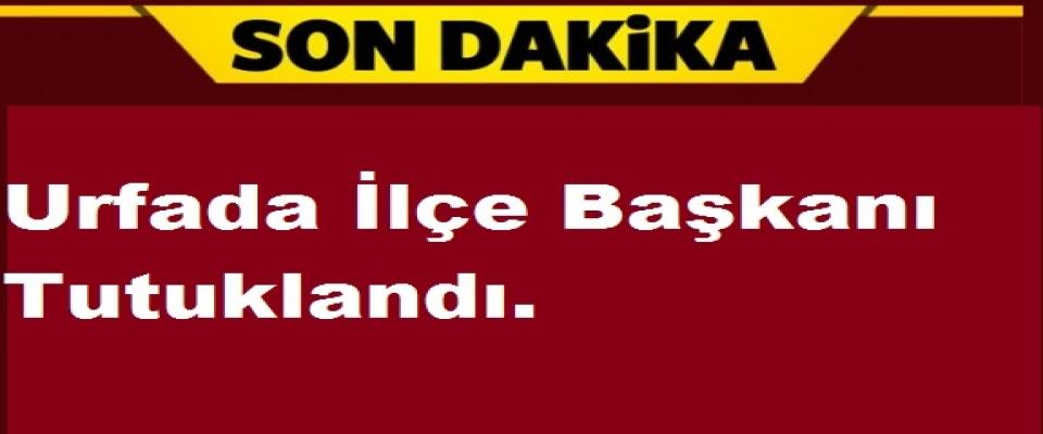 Urfa'da ilçe başkanı tutuklandı.