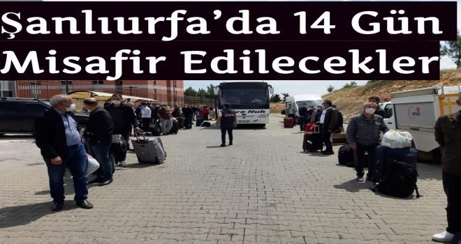 Şanlıurfa'da 14 Gün Misafir Edilecekler