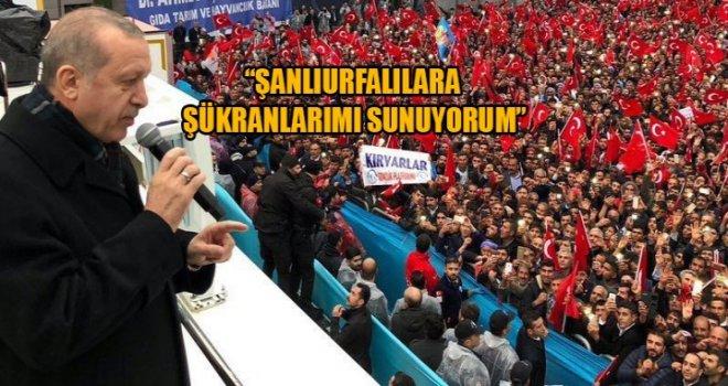 Erdoğan: Urfa'daki Kardeşlik Manzarası Tüm Türkiye'ye Örnek Olacak