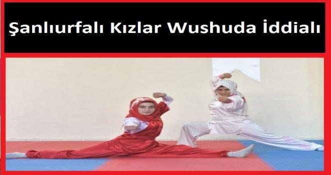 Şanlıurfalı Kızlar Wushuda İddialı